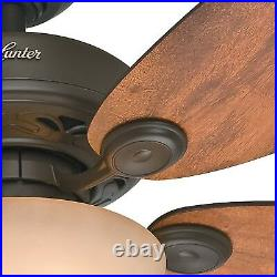 Hunter Fan 34 inch Casual New Bronze Indoor Ceiling Fan with Light and Pull Chai