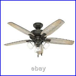 Hunter Fan 48 in Traditional Noble Bronze Ceiling Fan with Light and Pull Chain