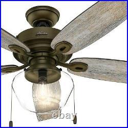 Hunter Fan 52 inch Casual Regal Bronze Indoor/Outdoor Ceiling Fan with Light Kit
