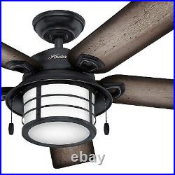 Hunter Fan 54 inch Weathered Zinc Outdoor Ceiling Fan with Light and Pull Chain